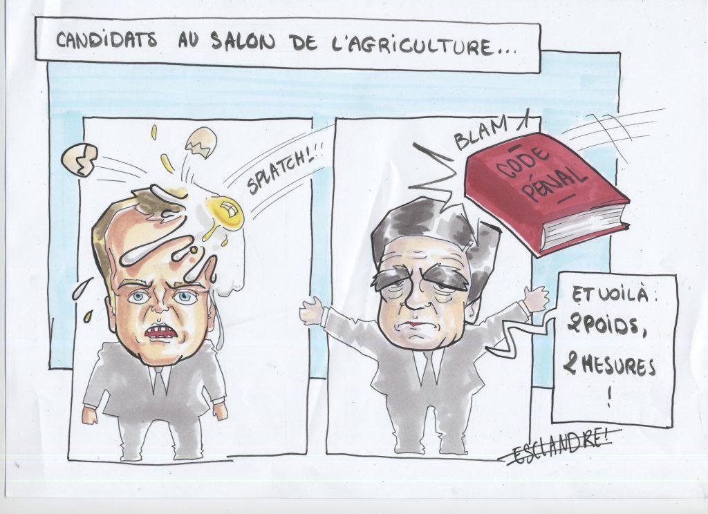 Fillon et Macron : l'épreuve du salon de l'agriculture
