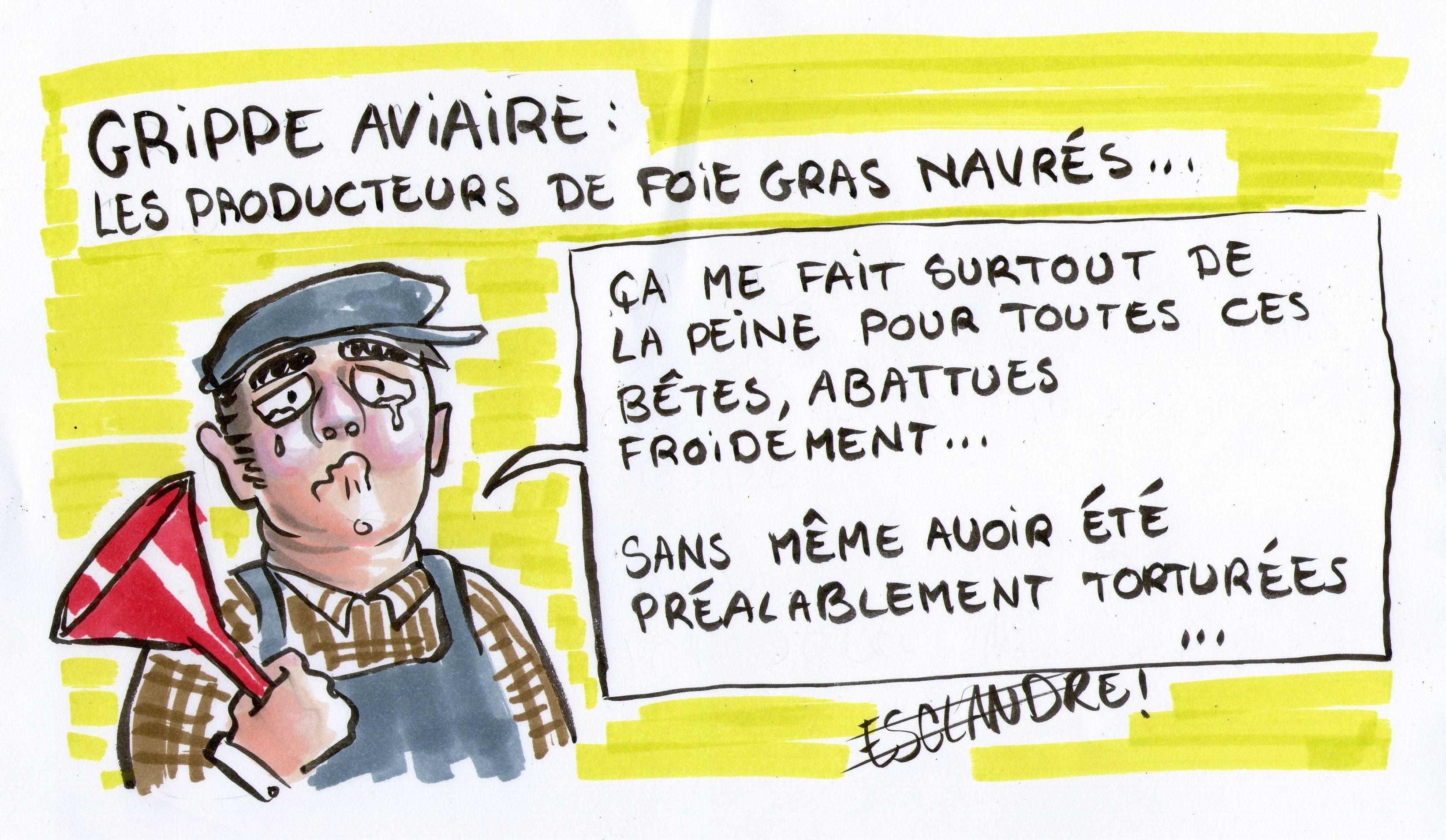 Grippe aviaire : les producteurs de foie gras navrés